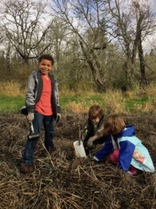 Planting at Muck Creek
